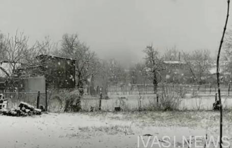 снег в Кодыме