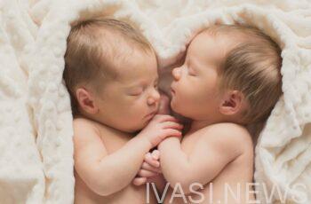 фото новорожденных близнецов
